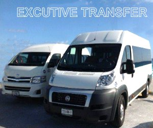 Van Executive transfer