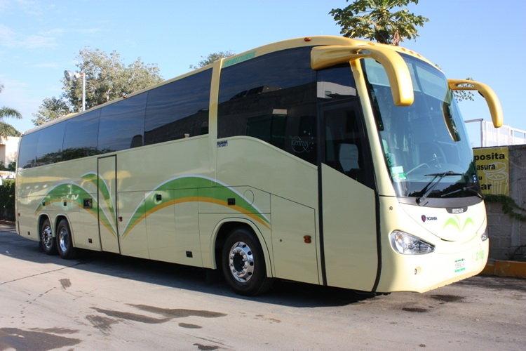 Bus 50 to 61 passengers