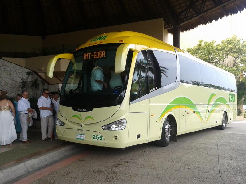 Bus transportation new model